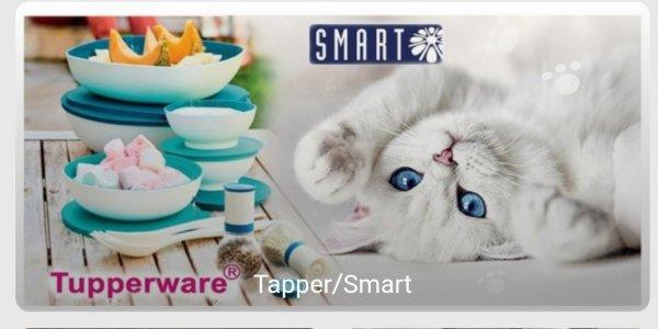 Скидки от 25% до 50%, Smart Tupper home, Владикавказ