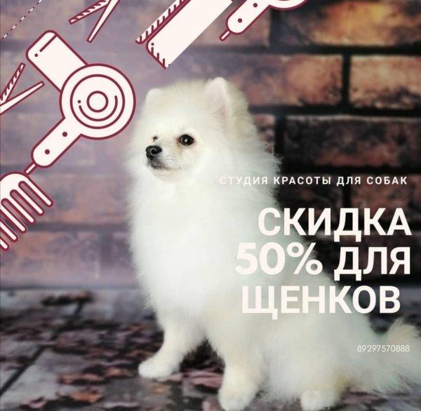 Promo - Скидка 50% на стрижку!