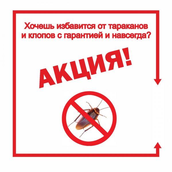 Акция дезинфекции, , Каскелен, Карасай
