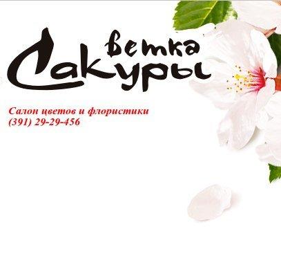 Ветка Сакуры,Фитодизайн, цветы,Красноярск