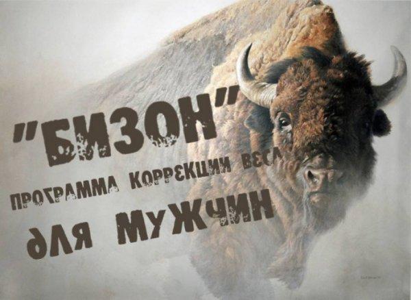 Бизон,Магазин одежды, Мужская одежда, Одежда больших размеров,Красноярск