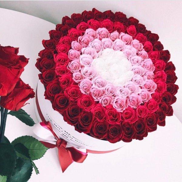 Florang, цветочный магазин, Абакан