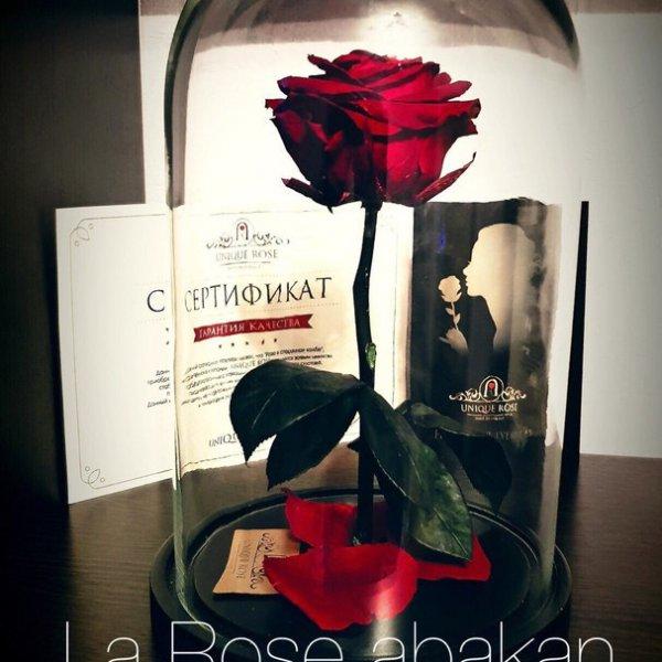 LaRose, магазин цветов, Абакан