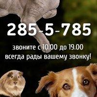 ЗооЭксперт24,Интернет-зоомагазин,Красноярск