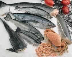 Алтын Балык, Рыба,  Талгар