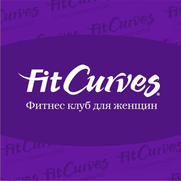 FitCurves, Фитнес-клуб, Тюмень