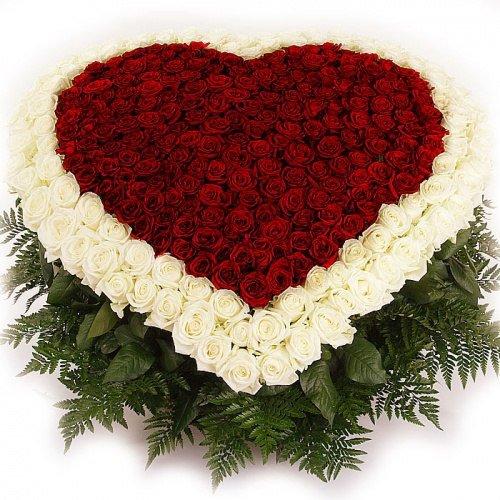 Алая роза, Магазин цветов, Надым