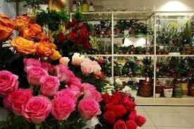 Гулдер Магазин цветов