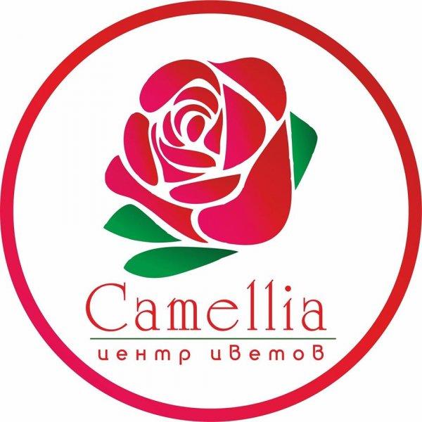 Company image - Camellia
