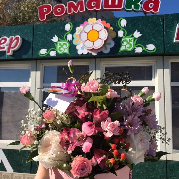 Ромашка, Магазин цветов, Степногорск