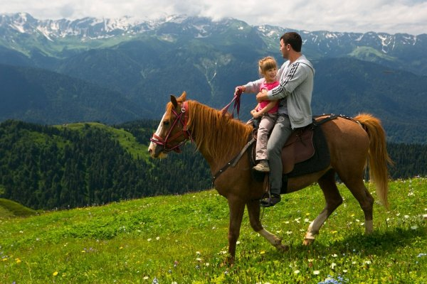 Конная прогулка,Верховая езда,Степногорск