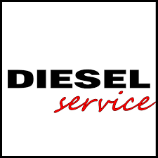 Автосервис DIESELCERVISE, Автосервис, СТО, ремонтируем качественно и быстро. Все виды автомобилей.,  Талгар