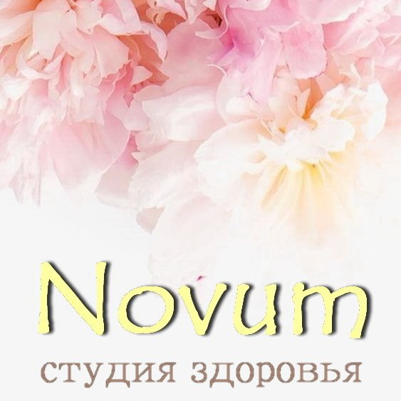 Company image - Novum