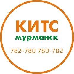 КИТС, IT-технологии,  Мурманск