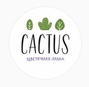 CACTUS, Цветочная лавка, Самара