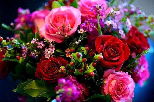 Алая роза,Магазин цветов, Доставка цветов и букетов, Искусственные растения и цветы,Тюмень
