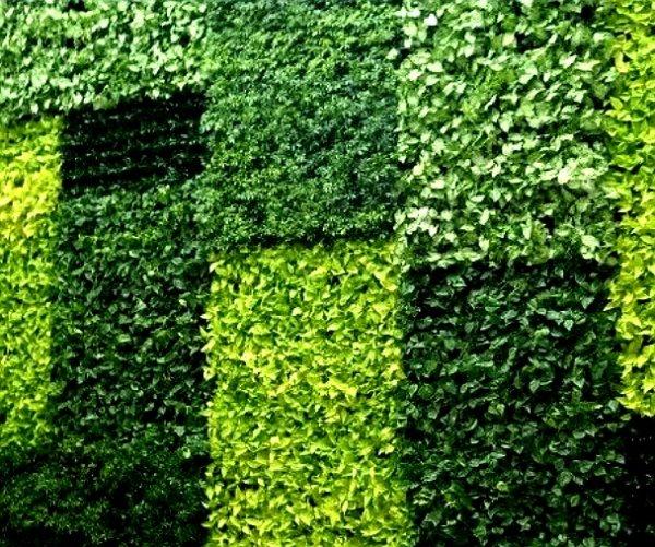 Системы вертикального озеленения GardenWall,Дизайн интерьеров, Искусственные растения и цветы,Тюмень