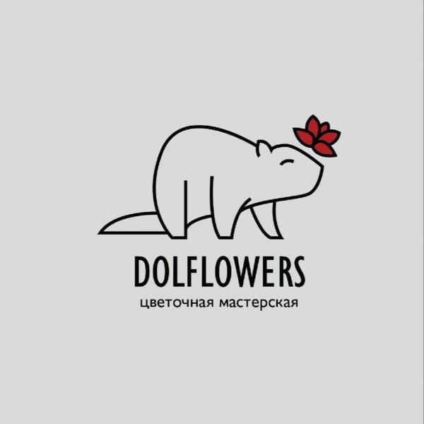 Dolflowers, магазин цветов и подарков, Долгопрудный