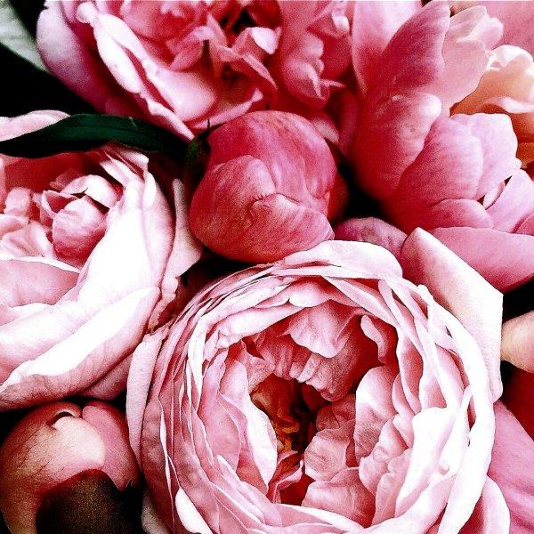 Букетная,Доставка цветов и букетов, Магазин цветов,Тюмень