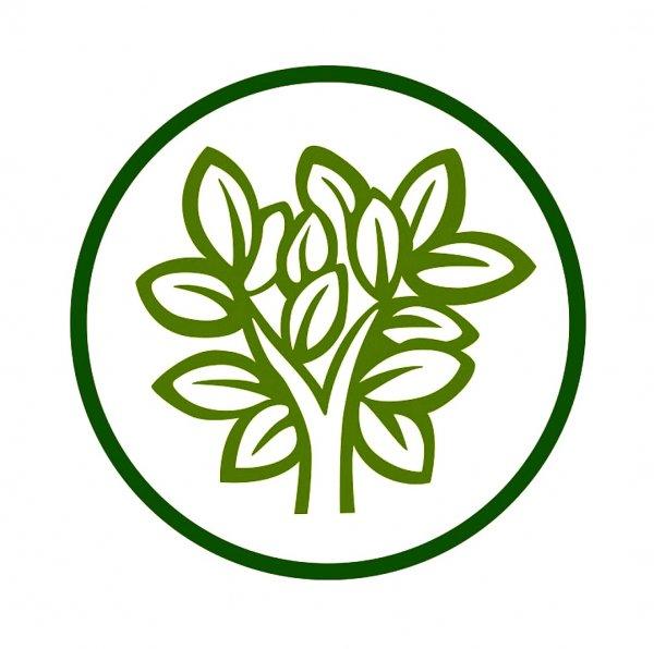 Зелень,Студия ландшафтного дизайна, Магазин цветов, Садовая мебель,Тюмень