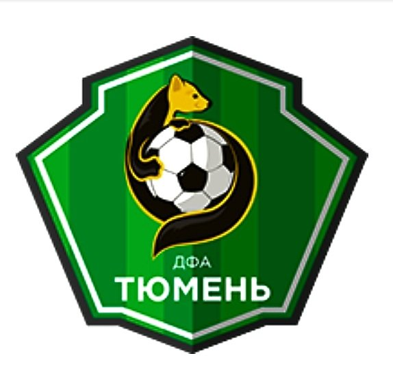Детская футбольная академия,Спортивная школа, Спортивный клуб, секция,Тюмень