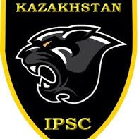 логотип компании IPCS