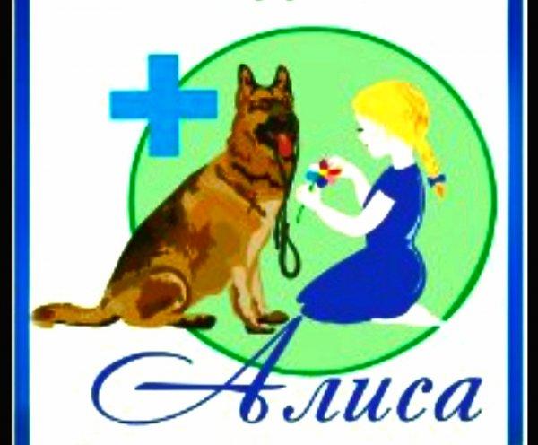 Алиса,Ветеринарная клиника, Зоомагазин,Тюмень