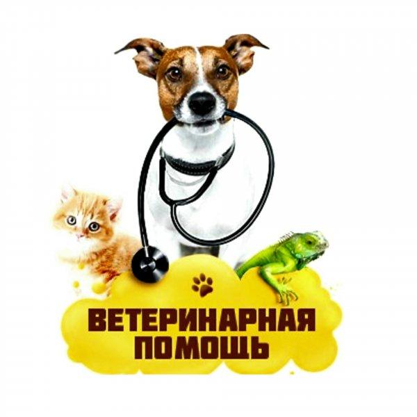 Ветеринарная помощь,Ветеринарная клиника, Зоомагазин,Тюмень