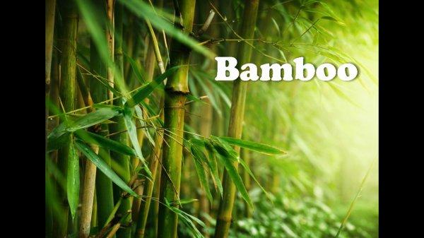 Bamboo,магазин одежды для дома,Магнитогорск