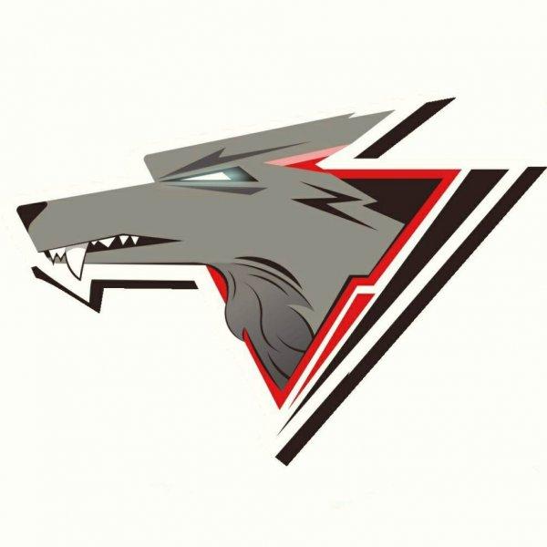 Степные волки,детский хоккейный центр,Магнитогорск