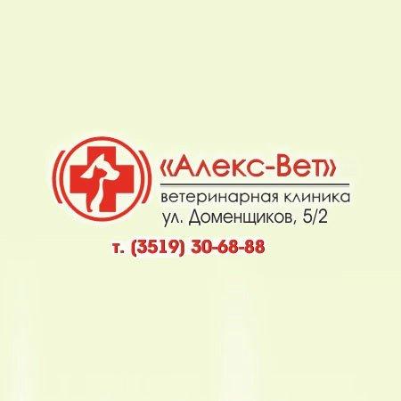 Алекс-Вет,ветеринарный центр,Магнитогорск
