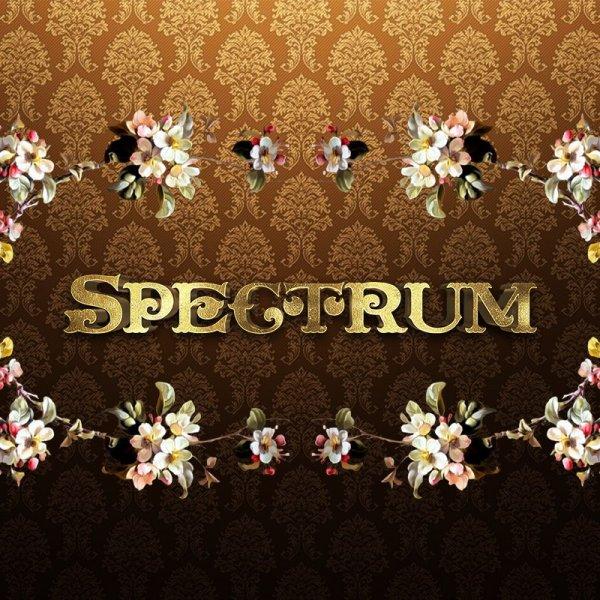Spectrum,салон-магазин подарков и товаров для интерьера,Магнитогорск