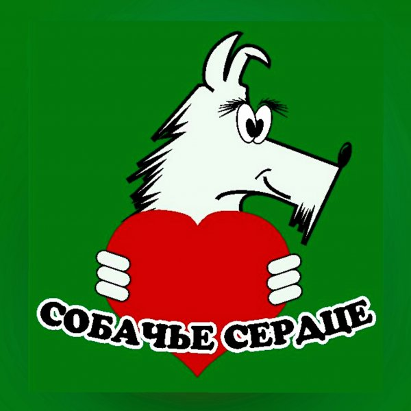 Собачье сердце,Зоомагазин, Ветеринарная клиника,Тюмень