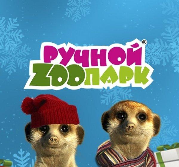 Ручной зоопарк,Зоопарк,Тюмень