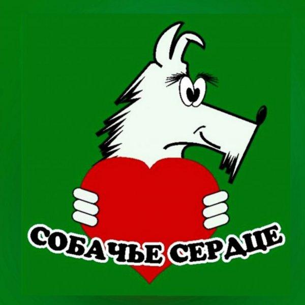 Собачье сердце,Зоомагазин,Тюмень