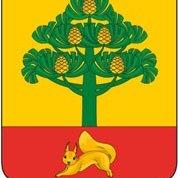 логотип компании Администрация Сосновоборска в Красноярском крае