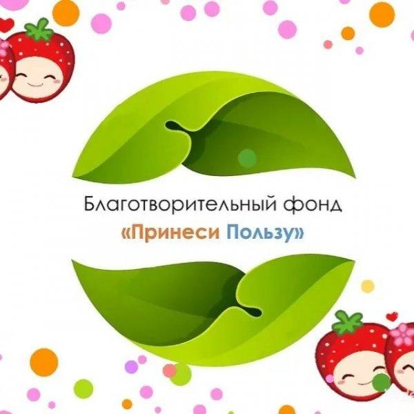 Благотворительный фонд,Благотворительный фонд Принеси Пользу,Красноярск