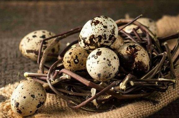 Яйца домашние перепелиные,Собственное производство,Иркутск