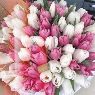 flower_96_74,Цветы из изолона,Магнитогорск