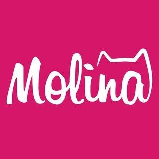 MOLINA,Корм для животных,Магнитогорск