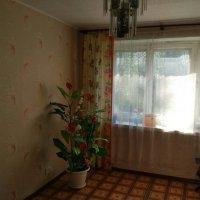 1 комнатная квартира с. Просвет ул. Заводская д. 5