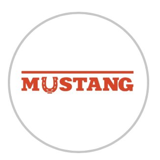 Mustang,автосервис,Темиртау
