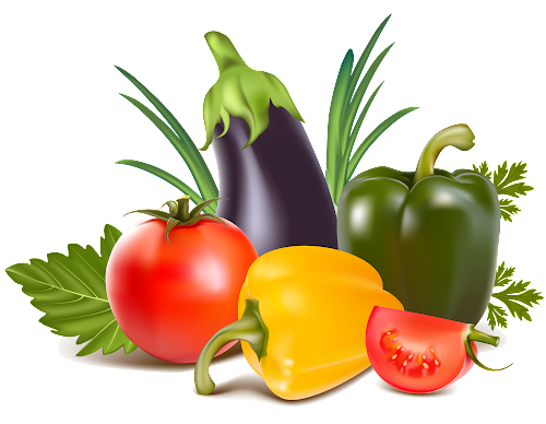 """логотип компании """"Отдел овощей"""""""