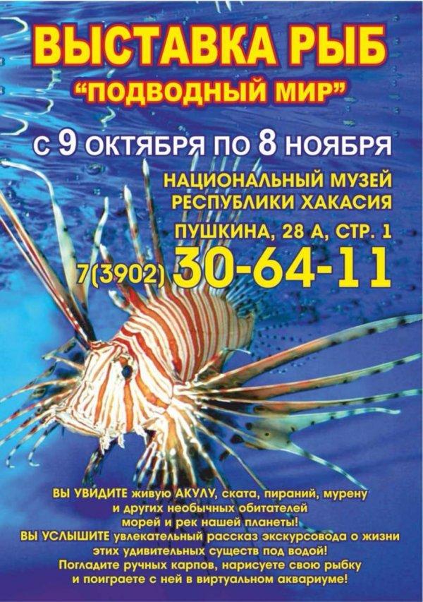 Выставка рыб в Национальном краеведческом музее им. Кызласова