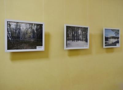 Выставки работ молодых курганских фотохудожников,