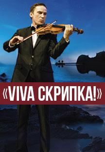 Viva скрипка