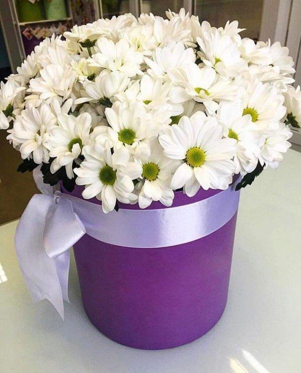 Доставка цветов ЗаЦВЕТ.сом🌹