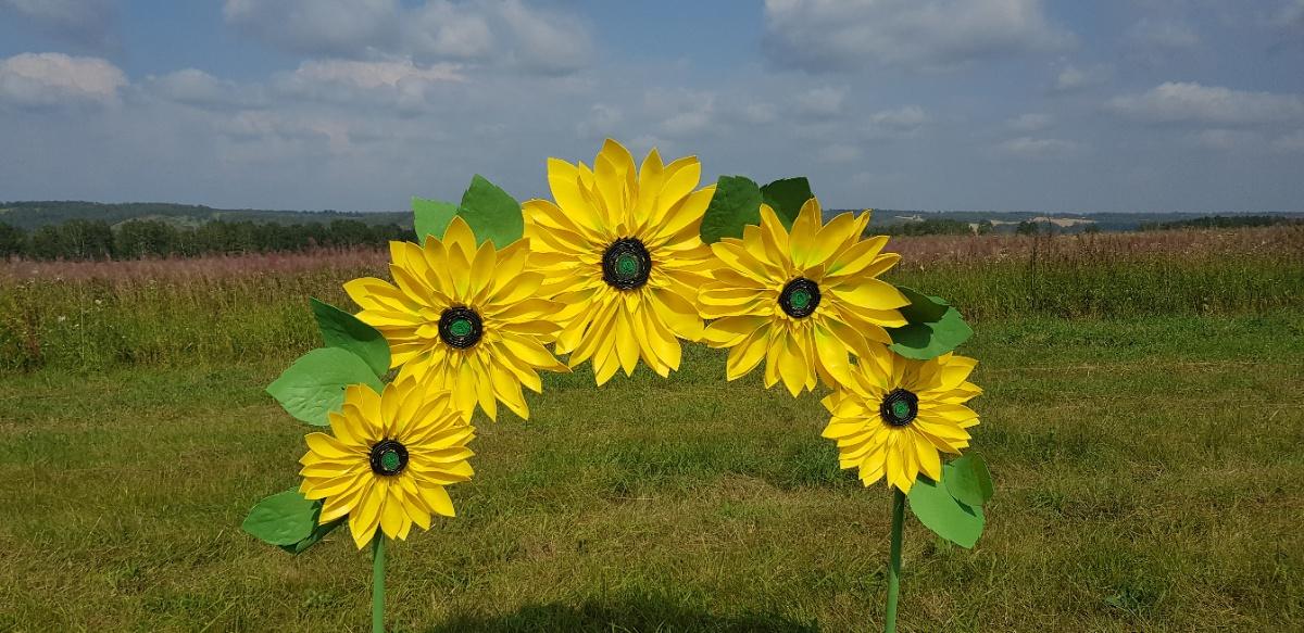 Ростовые цветы,фотозоны