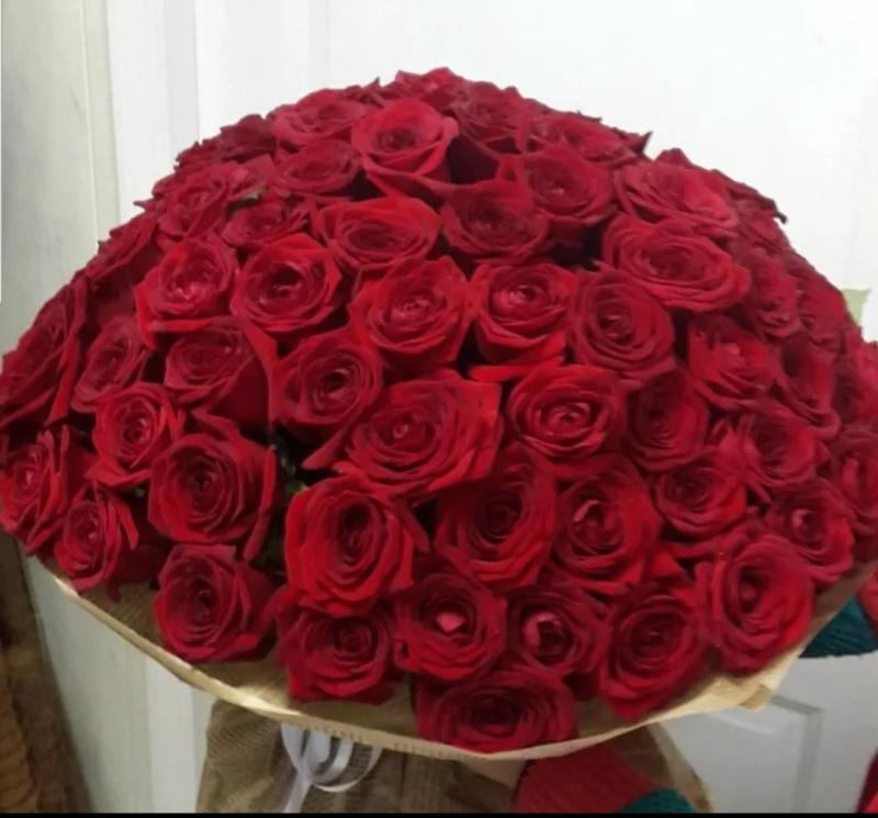 Розы, Летний Сад, Надым