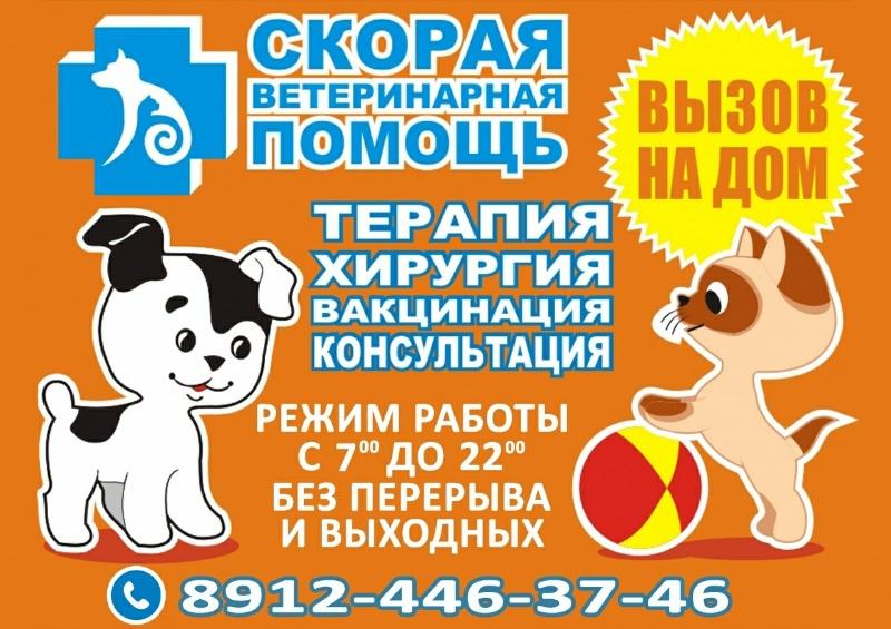 Скорая ветеринарная помощь ,Ветеринар на дом, ветеринарная клиника ,Можга
